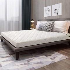 梦神左岸升级款椰棕床垫11cm 偏硬适合老人儿童
