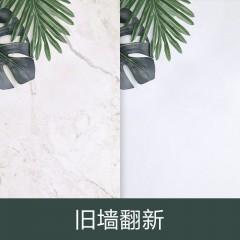 钢琴家 内墙砖 G-P63017A 300*600mm